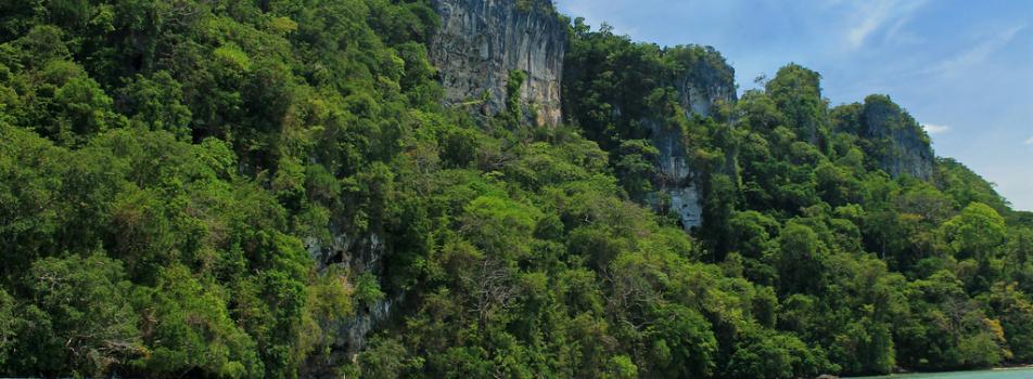 Tabon Cave Complex
