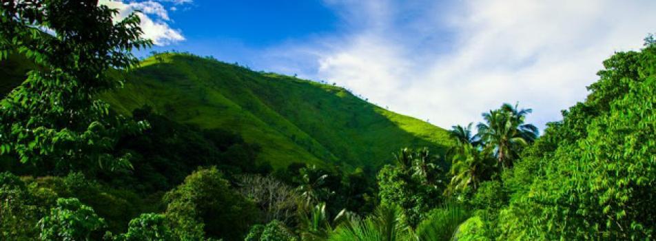 Barangay Conel