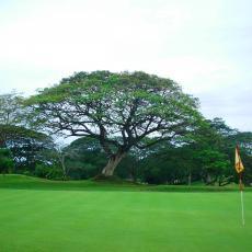 Zamboanga Golf and Country Club