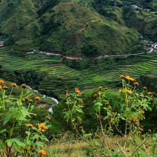 Kabayan, Benguet