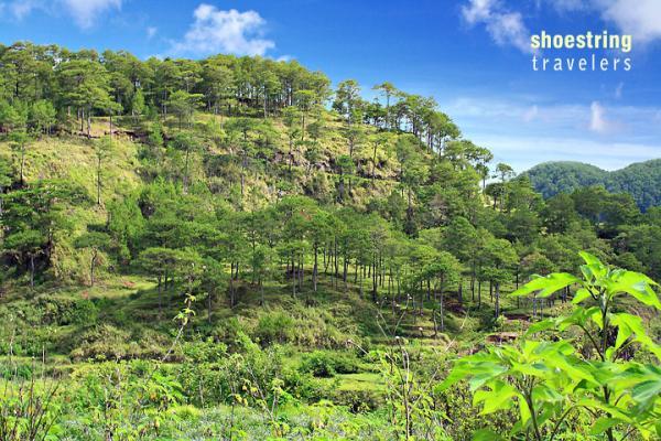 Sagada: A Laid-Back Mountain Retreat