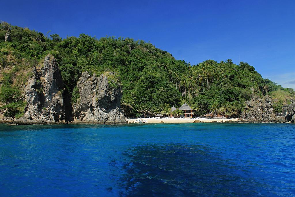 The Marine Sanctuary and Tourism of Apo Island