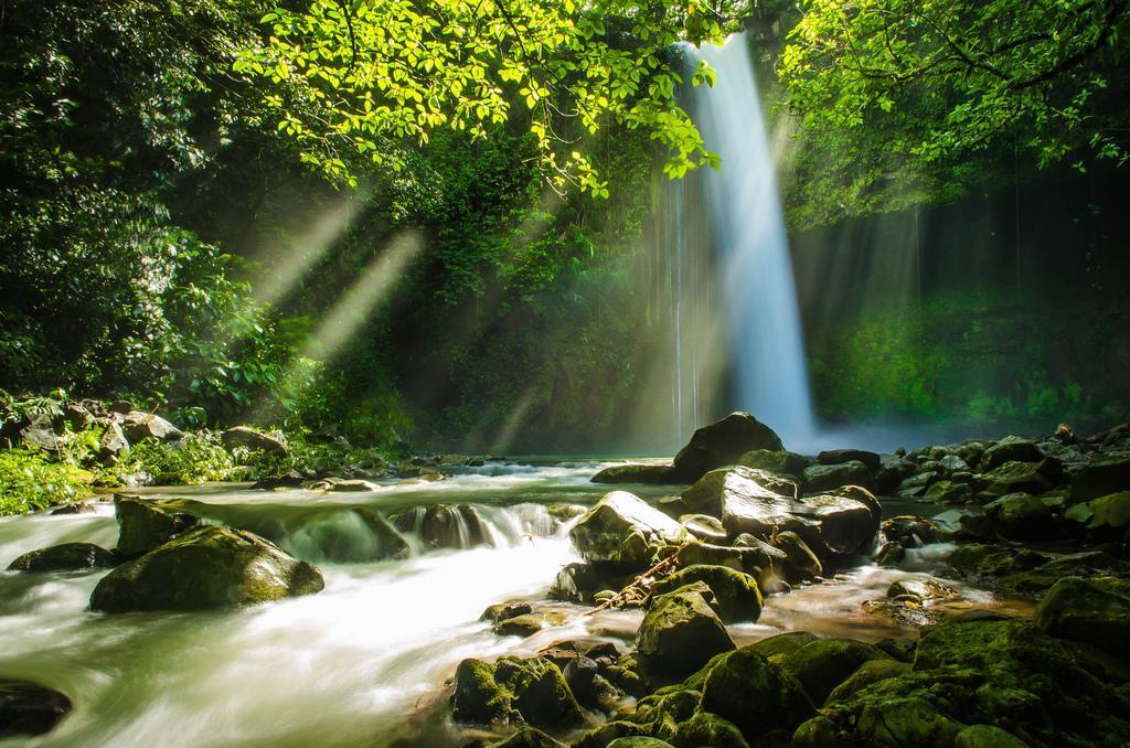 A Refreshing Bath at Buruwisan Falls