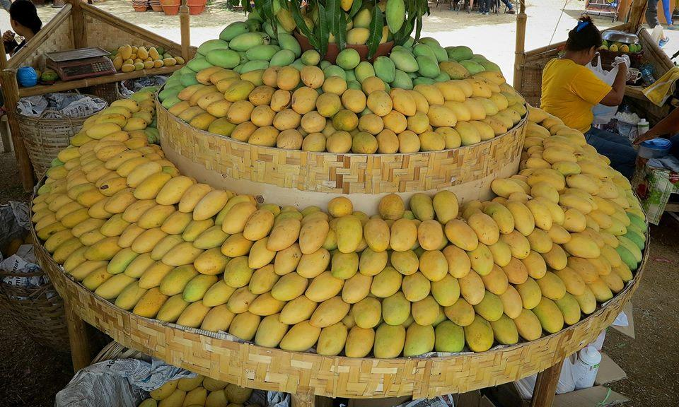 MANGOES TO THE MAX