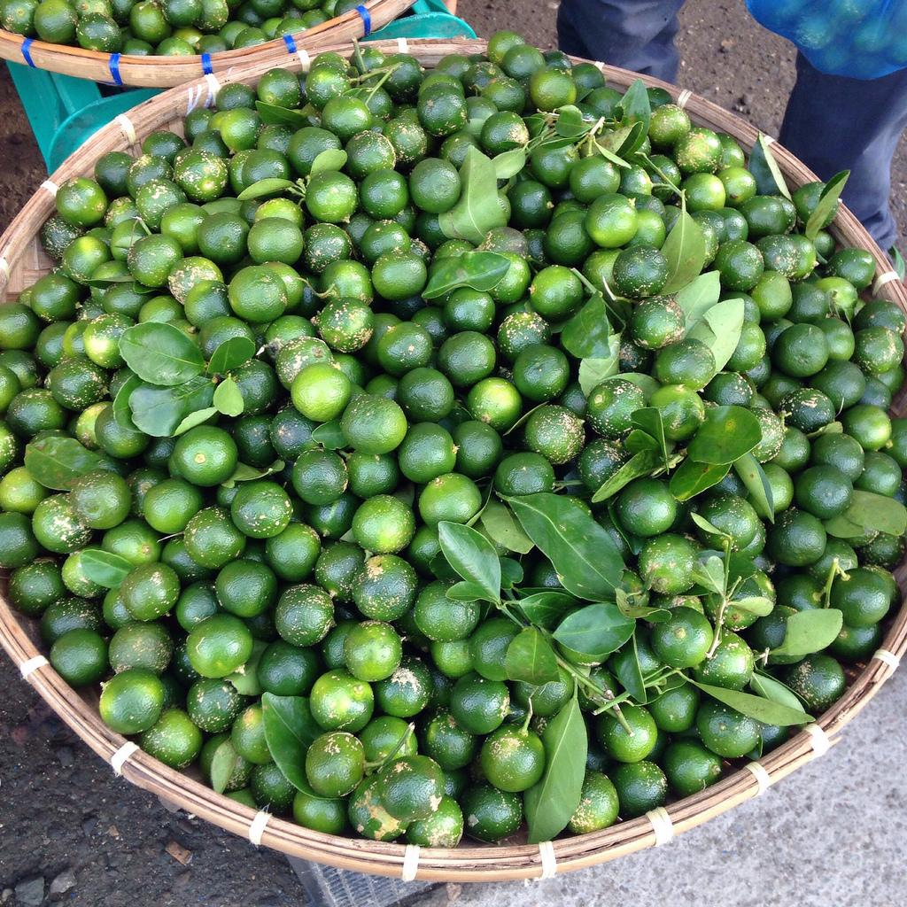 benefits of calamansi on clothes One of the natural benefits of calamansi juice is it acts as a natural skin  the  acid from the calamansi extract is perfect for stained clothes.
